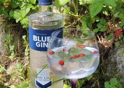blue_gin_happyhauer