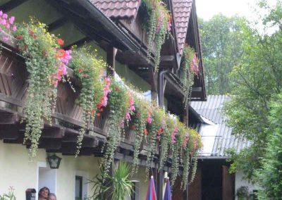 Ferienhof_Binder_Sommer